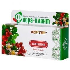 Флора-плант Шиповник таблетки №40