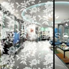The windowpanes decorated design of glass, color