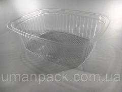 Упаковка блистерная контейнер SL800G
