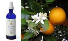 Flower water of orange