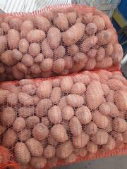 Картофель товарный, Черкасская область