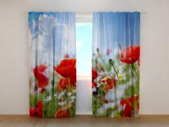 Curtains, Fotoshtora, Any image, Prices pleasan