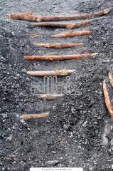 Уголь каменный антрацит марки АКО, АО, АМ, АС, АШ.