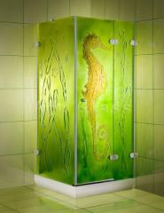 Glass shower cabins according to individual
