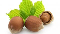 Hazelnuts! Funduktsely export in a shell from