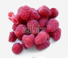 The berries frozen RASPBERRY