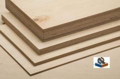 Plywood waterproof FSF, birch high-quality /