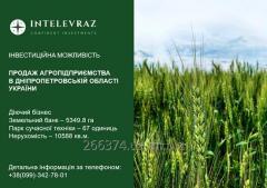 Агро предприятие в Днепропетровской области