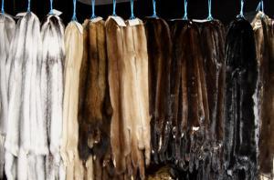 Fur semi-finished produc