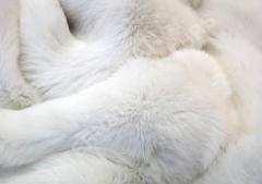 Natural fur of a rabbit, edge