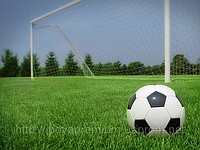 Спортивные синтетические покрытия(искусственная