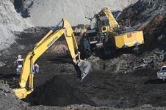 Brown coal for expor