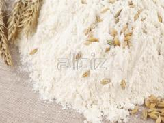 Мука пшеничная: в/с, 1/с, 2/с. Мука ржаная.