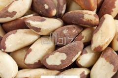 Орех бразильский