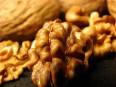 Грецкие орехи от производителя