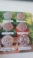 Упаковка (блистер)для семян ( Изделия из пластика