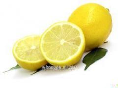 Лимона белого эфирное масло, натуральное