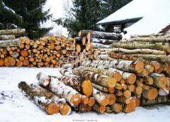 The rounded logs for construction of houses. Expor