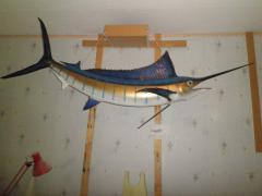 Marlene's fish
