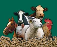 Biostern for farm animals in Ukraine to Buy, the