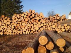 Дрова метровые (дуб)