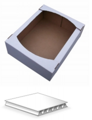 Confectionery tray 219kh120kh50mm. T-21 White
