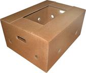 Boxes are banana. Banana box