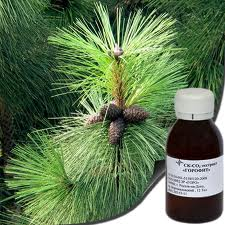 CO2 extract, pine