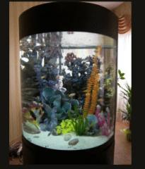 Production of aquariums, Kiev