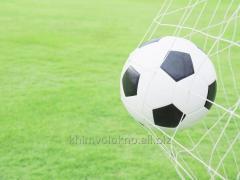 Net for football goal 3x2x1 (Reinforcing halyard)