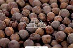 Семена горчицы черная, цена, продам, Украина