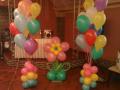 Compositions from balloons Kiev, Kiev region
