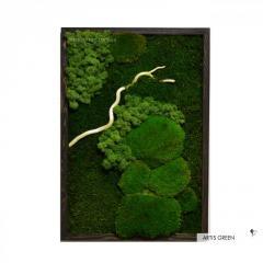 Картина из стабилизированного мха и растений...