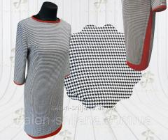 Cloth GL + chervonia