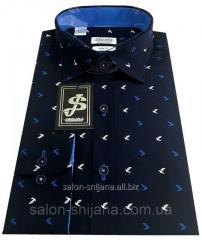 Рубашка мужская c принтом № GS 66.7