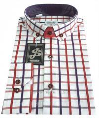 Рубашка мужская в клетку №12-28 - 50-1095 V1