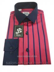 Рубашка мужская S 122.1 2689 V8
