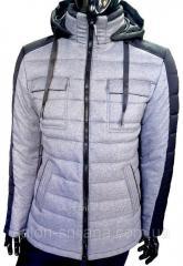 Куртка мужская стеганая 18351 серая