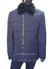 Куртка мужская зимняя 1900 цв.3