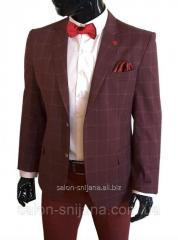 Мужской пиджак приталенный бордовый в клетку № 75/2- 1161799 бордо