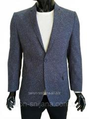 Мужской пиджак приталенный №94/3 - BQ 014/2 SF