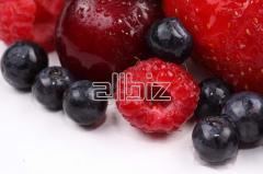The berries frozen. Wide choice. Export is