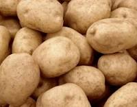 Potatoes universal, sale of vegetables across all