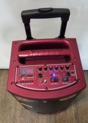 Аккумуляторная колонка с Bluetooth Temeisheng