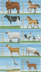 Electrofences for cattle and animals