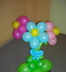To order compositions from balloons in Kiev