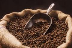 Coffee, TM NADIN
