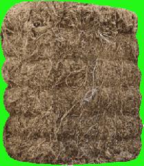 Fibers textile, flax fiber. Flax fiber, linen
