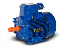 Explosion-proof motor 4VR(AIM)100S, 4VR(AIM)100L,