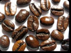 Misturas de café expresso